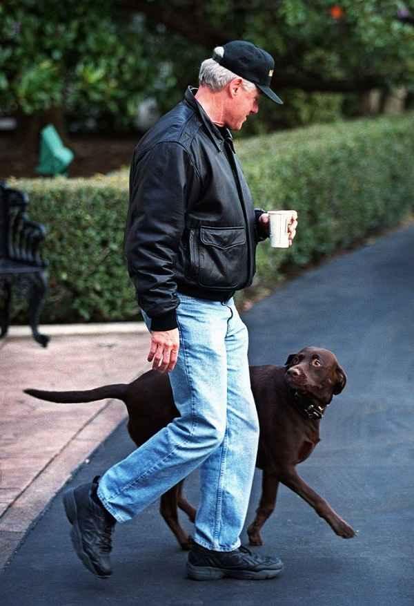 کلینتون در حال پیاده روی با سگش