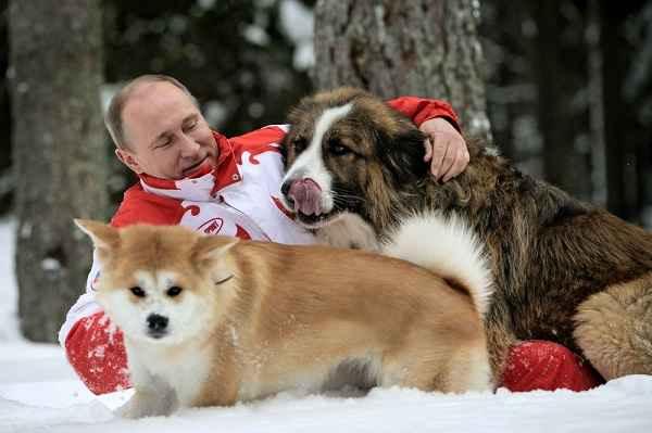 پوتین در حال برف بازی با