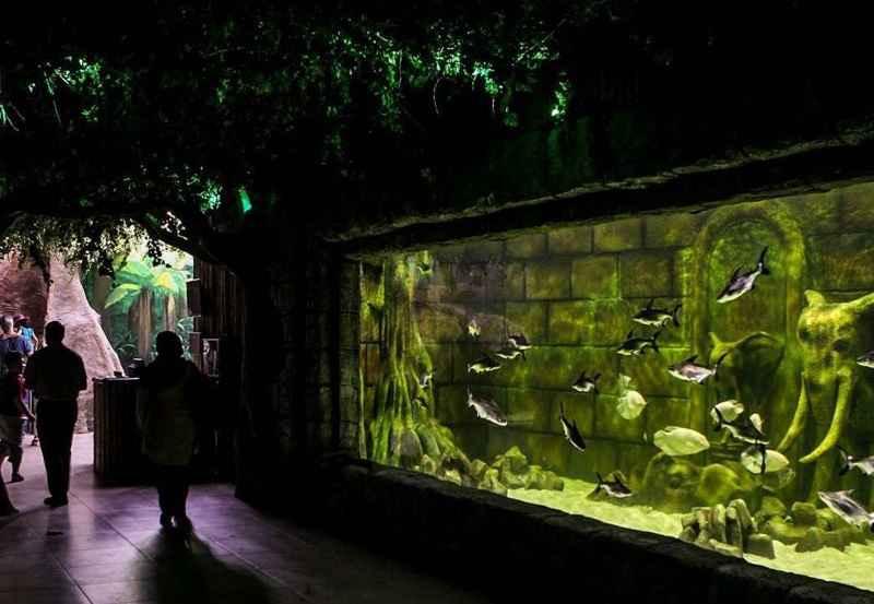 تونل اکواریوم در ایران