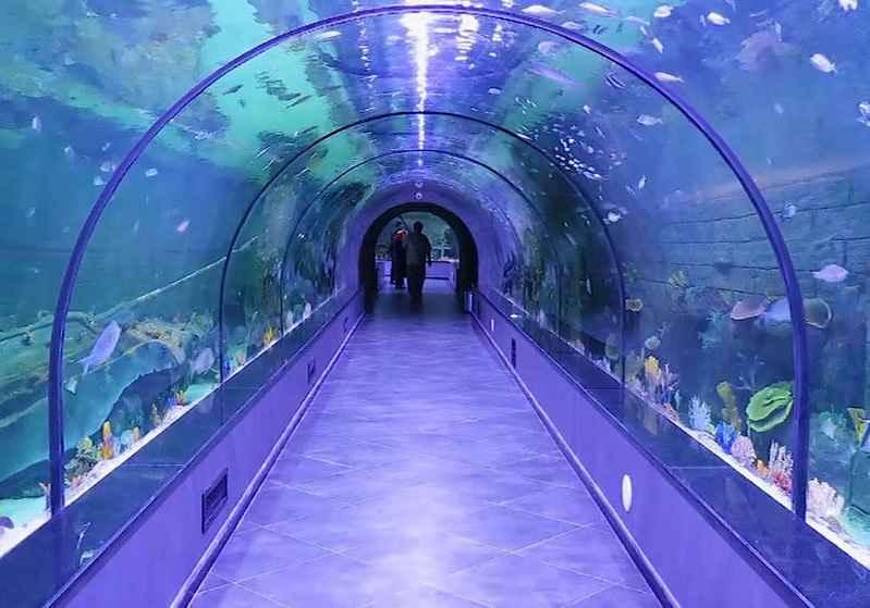 تونل اکواریوم بندرانزلی